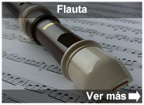 Programa Flauta