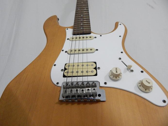 DSCN2500